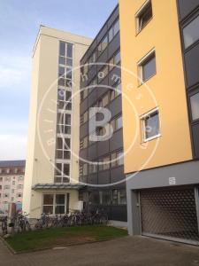 zwingerclub domina freiburg im breisgau